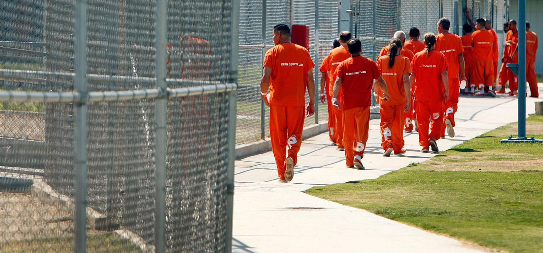 Criminal justice trends evaluation   term paper